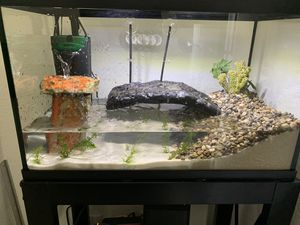 10 gallon fish tank with stand for Sale in Irvine, CA