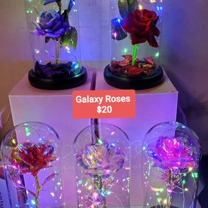 Galaxy Roses $20 for Sale in Moreno Valley, CA