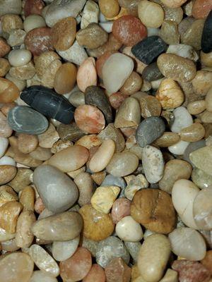 Assorted rocks for Sale in Denver, CO