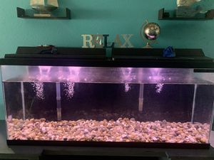55 gallons fish tank / Pecera de 55 galones for Sale in Kissimmee, FL