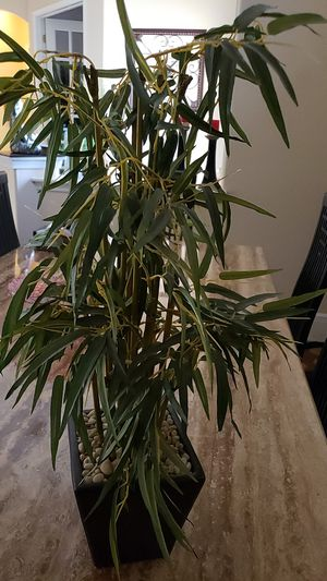 Bamboo fake plant greenery home decor for Sale in Tampa, FL
