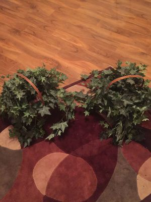 Fake plants for Sale in Garland, TX