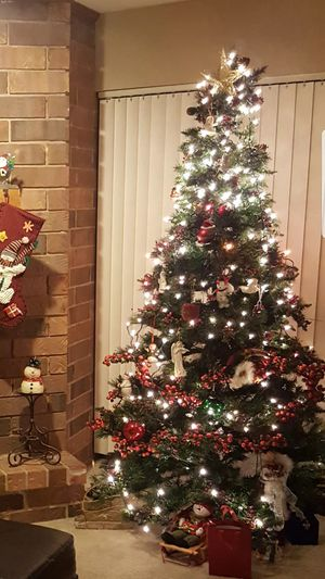 Christmas tree for Sale in Palatine, IL