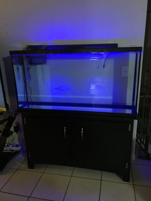 60 gallon tank and stand ensemble plus extras!!!! for Sale in Tampa, FL