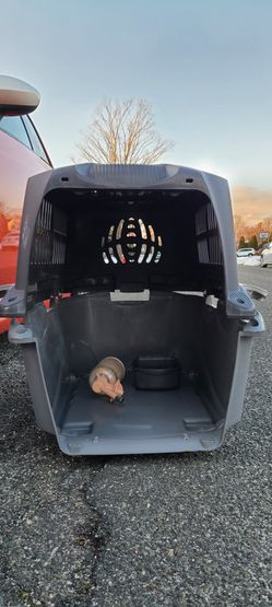 Airline approved double latch dog crate for Sale in East Garden City,  NY
