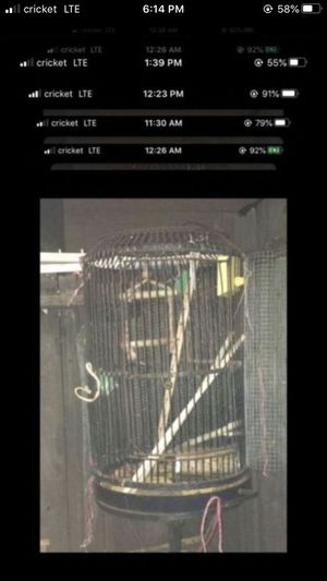 Bird cage serious buyers only gone soon as possible for Sale in Sacramento, CA