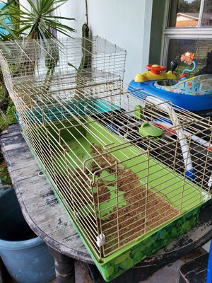 Rabbit Guinea pig cages for Sale in Tampa, FL