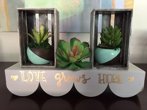 Succulent Floating Shelf for Sale in Parma Heights, OH