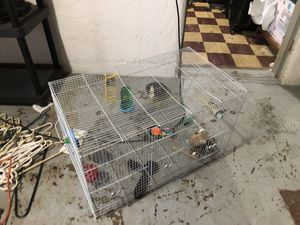 Bird cage for Sale in Watertown, MA