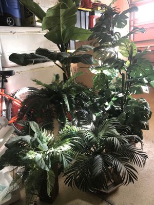 Plastic decoration plants GREAT QUALITY for Sale in Wesley Chapel, FL