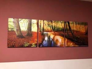 Canvas, 3 parts for Sale in Bethesda, MD