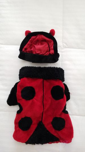 Lady Bug Dog Costume for Sale in Chino Hills, CA