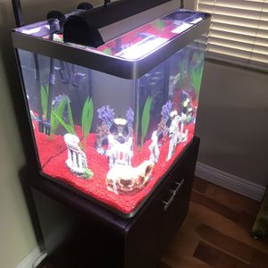 50gal Fuval Curved Tank w/stand + Filter + Heater + Bluetooth Lighting - Without Fish for Sale in Santa Clarita, CA