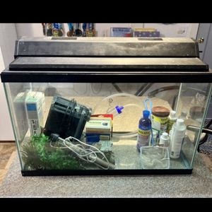 30 Gallon Fish Tank With Everything for Sale in Tacoma, WA