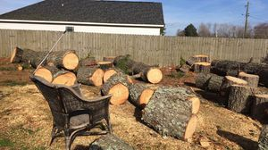 Free Pine Firewood for Sale in Farmville, NC