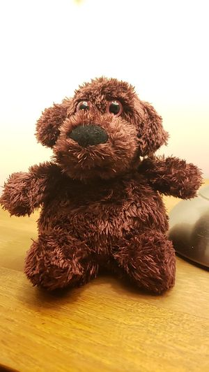 Teddy bear chocolate scented good condition for Sale in Fairfax, VA