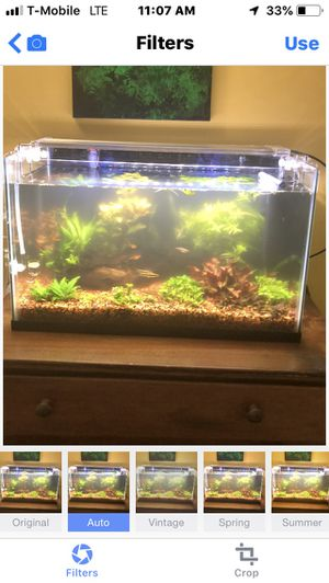 10 gallons planted fish tank with led light filter for Sale in Sterling, VA