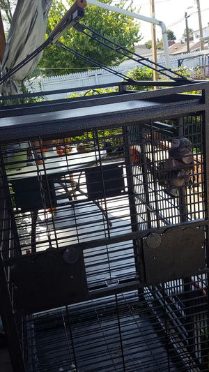 Big Birds cage , perrots for Sale in Elmwood Park, IL