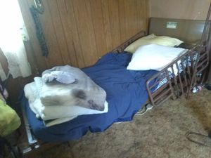 Hospital bed for Sale in Dixon, MO