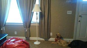 Tall White Floor lamp for Sale in South Norfolk, VA