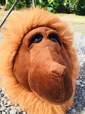 Orangutan 🤩 for Sale in Lebanon, TN