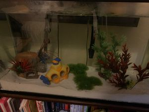 Fish tanks for Sale in CTY OF CMMRCE, CA