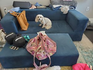 Convertible plush couch ( dog not included) for Sale in Oakland, CA