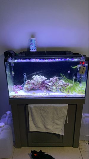 50 gallon saltwater fish tank with stand for Sale in Plantation, FL