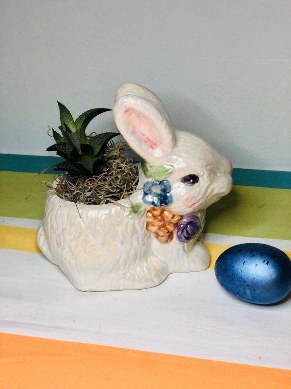 Bunny succulent planter