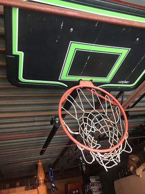 Lifetime Basketball Hoop for Sale in Tampa, FL