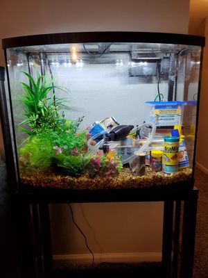 Marineland 38 Gallon bowfront Aquarium starter kit for Sale in Houston, TX