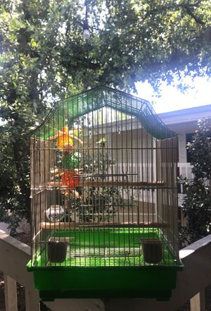 Bird cage with toy for Sale in Austin, TX