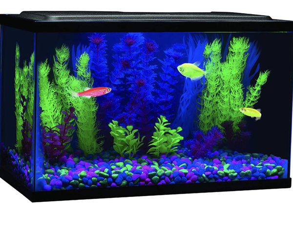 "Glofish 8"" Blue LED Bar Light NEVER USED!"