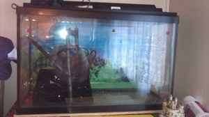 Fish tank for Sale in Portland, OR