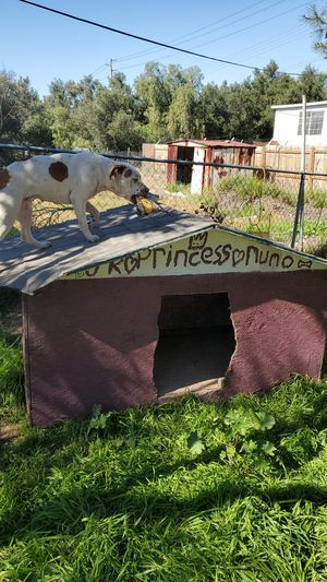 Big dog house for Sale in Spring Valley, CA