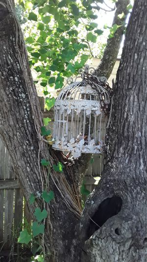 Bird cage for outdoor decoration for Sale in Kissimmee, FL