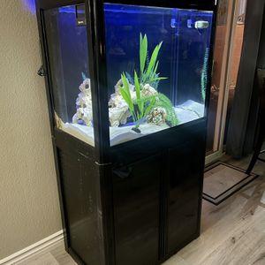 Aquarium for Sale in Riverside, CA
