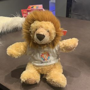 100 Year Anniversary San Diego Zoo Lion for Sale in Spring Valley, CA