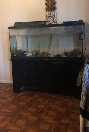 Fish tank for sale!!! for Sale in Phoenix, AZ