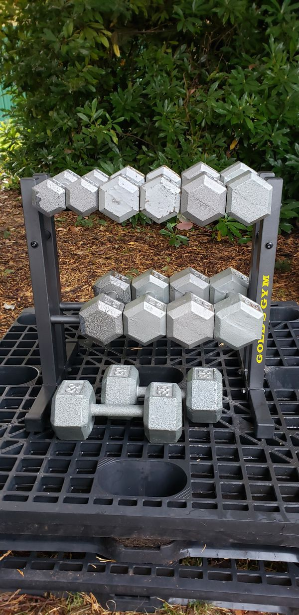 Hex Dumbbells 10-35 lbs in pairs, with rack, 270 lbs total