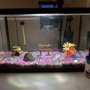5 1/2 Gallon Glass Fish Tank for Sale in Alexandria, VA