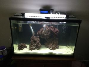 30 gallon saltwater tank for Sale in Tallmadge, OH
