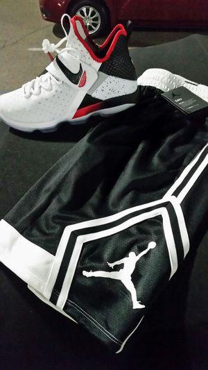 LeBron shoes xiv nike basketball shoes size 12 jordan shorts xi 11 xii xv 15 16 for Sale in Phoenix, AZ