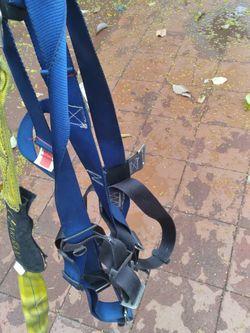 Harness for Sale in Norwalk,  CA