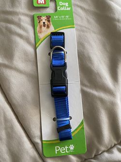 FREE Dog Collar for Sale in Riverside,  CA