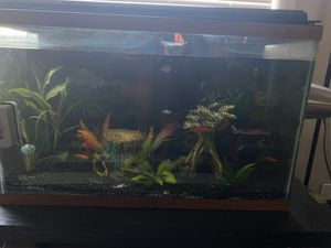 Fish tank for Sale in Keizer, OR