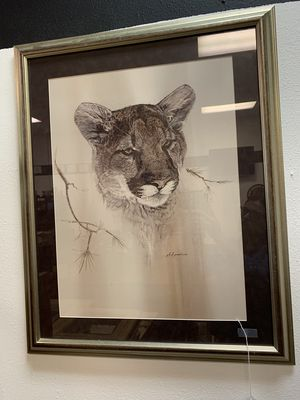 Animal Pictures for Sale in Altamonte Springs, FL
