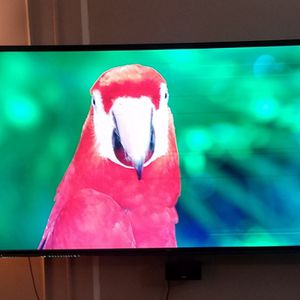LG 65 inch HD 1080 Flat Screen TV Television for Sale in Arlington, TX
