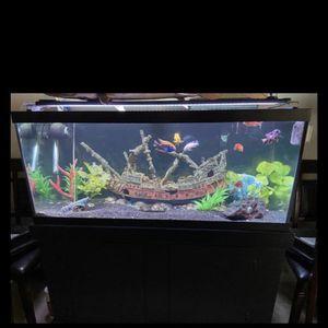 75G fresh water aquarium full set up for Sale in North Las Vegas, NV