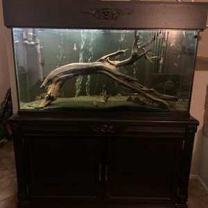 Fish Tank with FX6 Filter for Sale in Garden Grove, CA